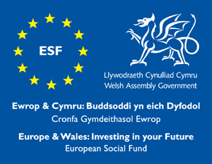 ESF Welsh Assembly Government