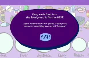 The Food Groups Game