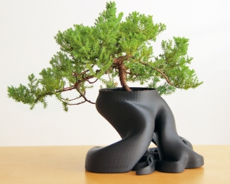Bonsai Planter