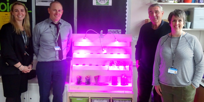 Christchurch CP School Hydroponics