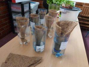 Hydroponics Recycle