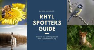 Rhyl Spotters Guide